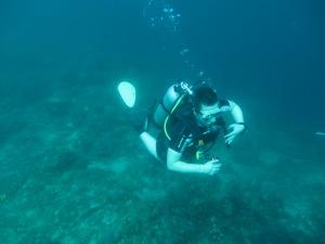 Det är så enkelt att dyka i varma vatten! Ingen torrdräkt, ingen is.