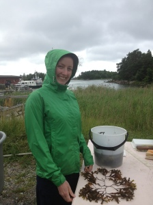 Frances and bladderwrack!