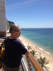 Utsikt från hotelltaket