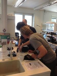 Ola, Erik och Oscar  löser problem.