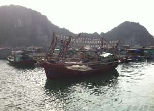 trålfiskebåt
