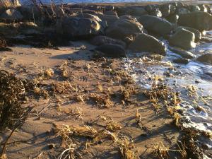12Rotsystem binder sanden