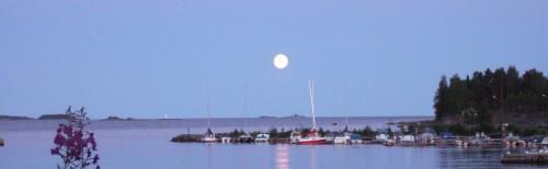 När månen hänger full över Östersjön i juli är det dags för tångforskaren att gå till labbet och arbeta