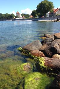 3Klart vatten alger visby