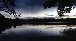 Brunnsviken 20150108