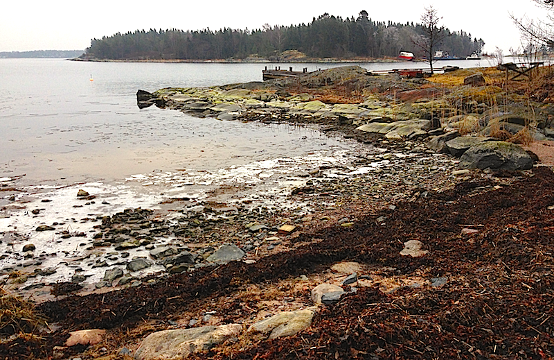 Räfsnäs lågvatten och tångvall
