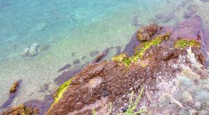 3ödalger på Korfu