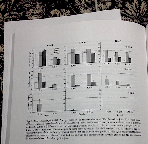 7figur-a%cc%8algra%cc%88so%cc%88verlevnad