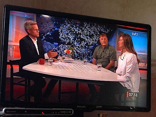 9TV1 bakgrundsbild