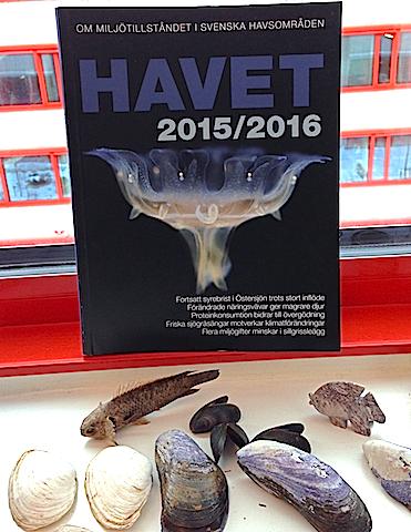Havet 2015:2016