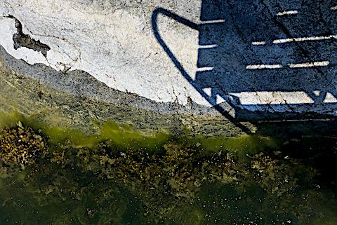 5 lågvatten påverkar algzonering 20180523