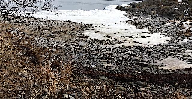 1Råttviken lågvatten vall 20180409