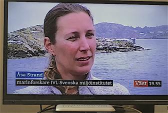 1Åsa Strand SVT väst 2018 juli