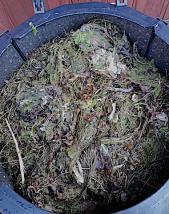 Vackstanägymn 20181004 kompost 3spigg