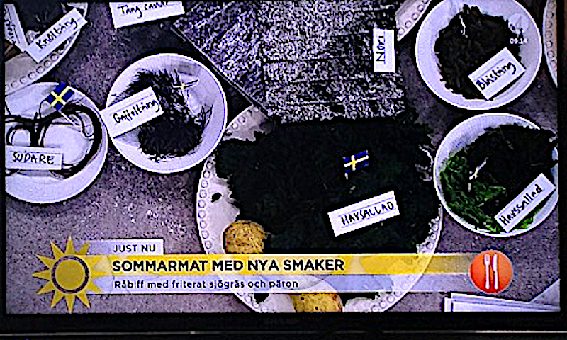 1 sommaralger i TV program
