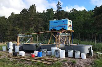 1 odlingssystemet på Askö