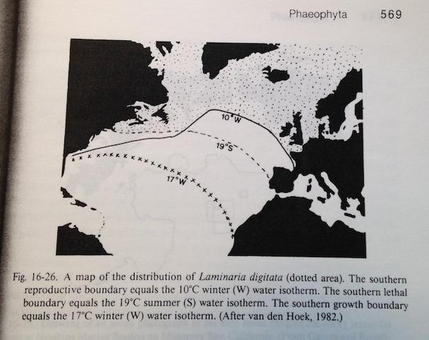 Utbredning av Laminaria digitata o temperatur