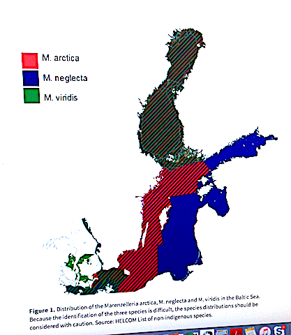 3 Karta Utbredning enl. Helcom