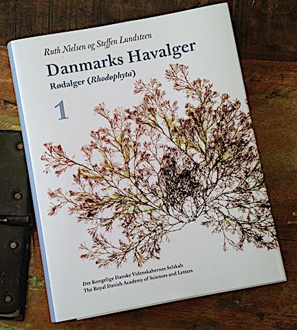 Danmarks havsalger 1 rödalger