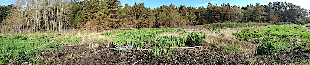 3 Panorama Saltö 20200522
