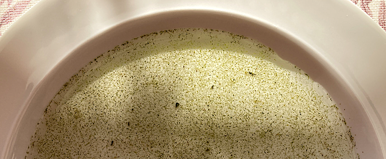 1 Tallrik med knippvattenblom