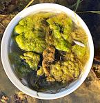 drivande alger o spigg itunna