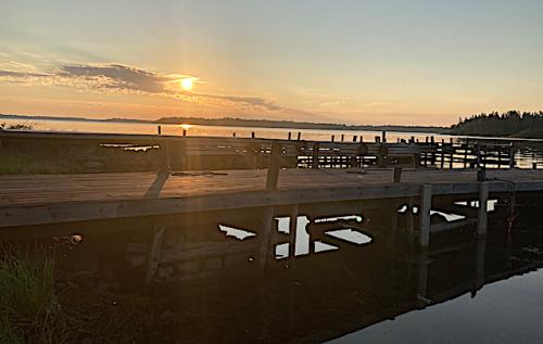 soluppgång: spegling gömmer sig under bryggan+